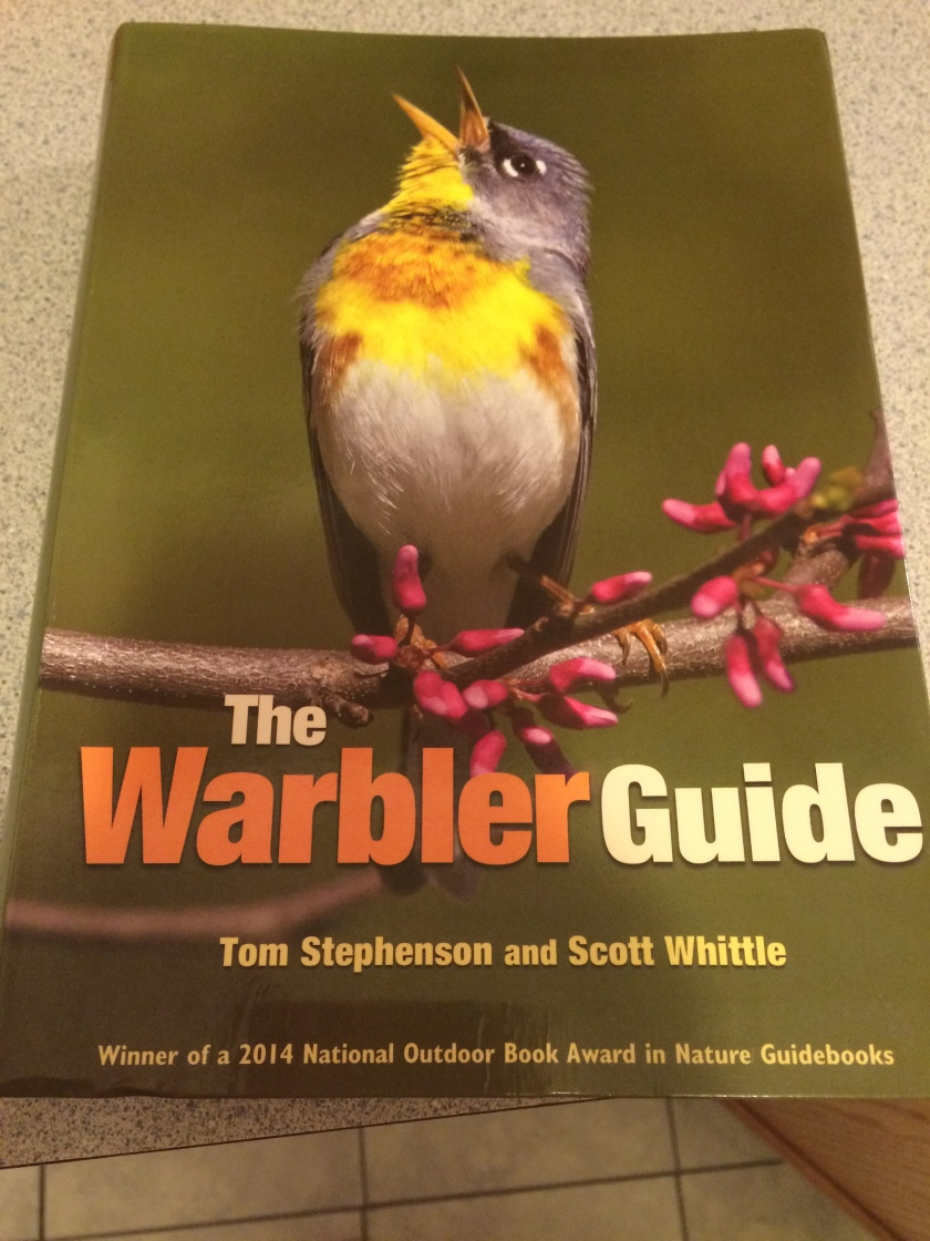 warbler-guide