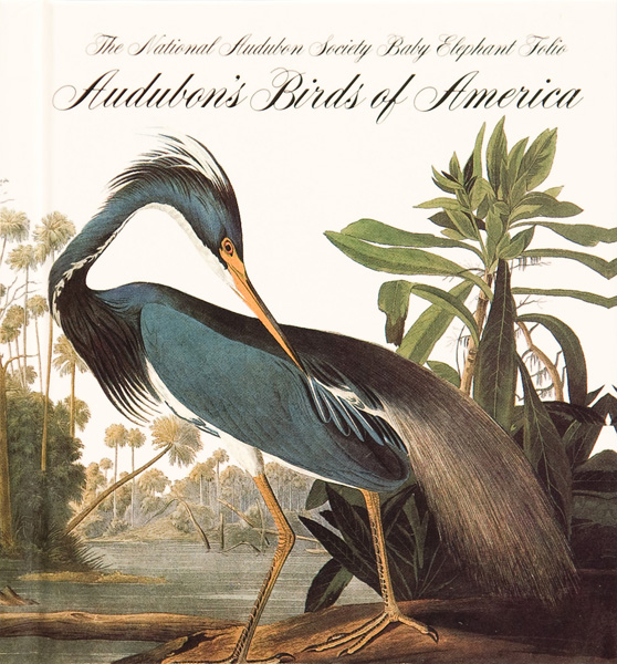 Audubon_Birds_of_America