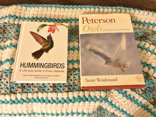 Owl and Hummingbird Guides