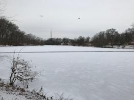A Frozen Haddon Lake (Image by BirdNation)